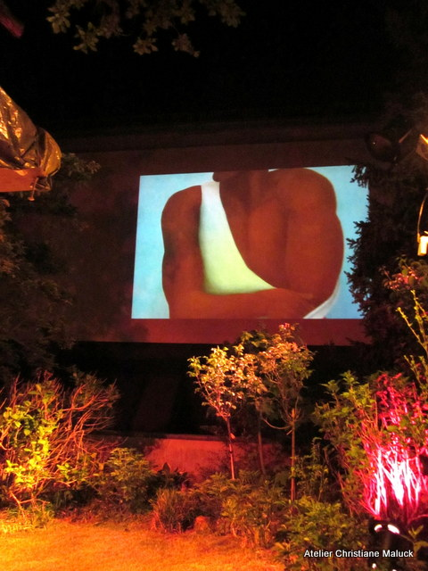 011 Kunst-Projektionen von Christiane Maluck