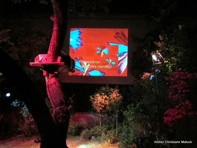 016 Kunst-Projektionen von Christiane Maluck
