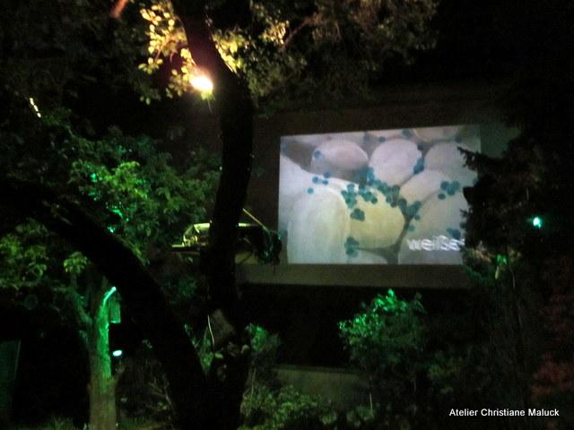 019 Kunst-Projektionen von Christiane Maluck