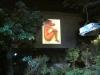 010 Kunst-Projektionen von Christiane Maluck