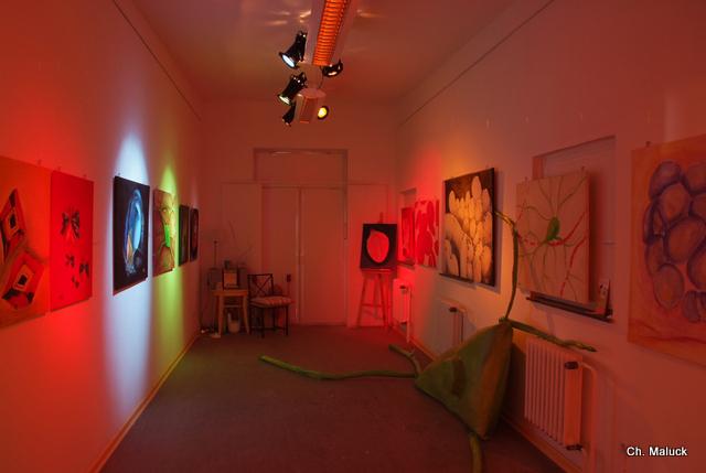 Rauminstallation des Mikrokosmos, eine Bilderausstellung im Dunkeln