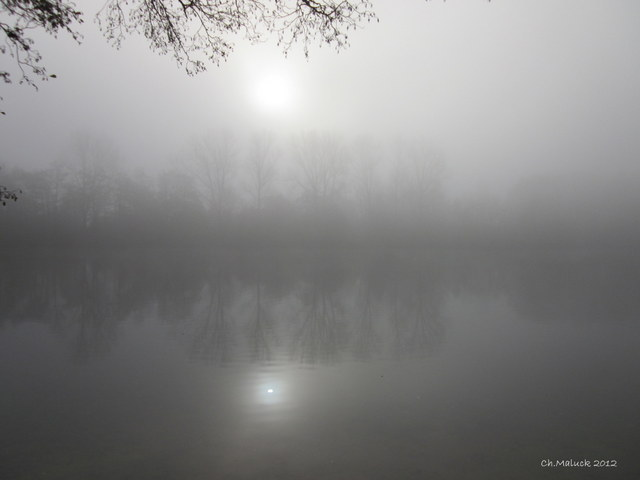 07-jpg Novembernebel, 2012, Christiane Maluck