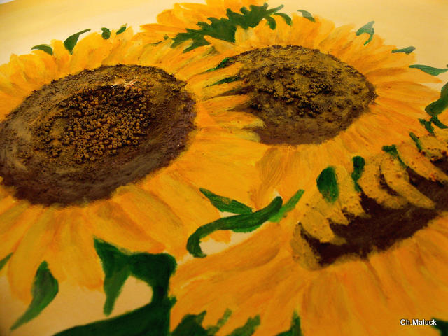 012 Sonnenblumen, Nahaufnahme